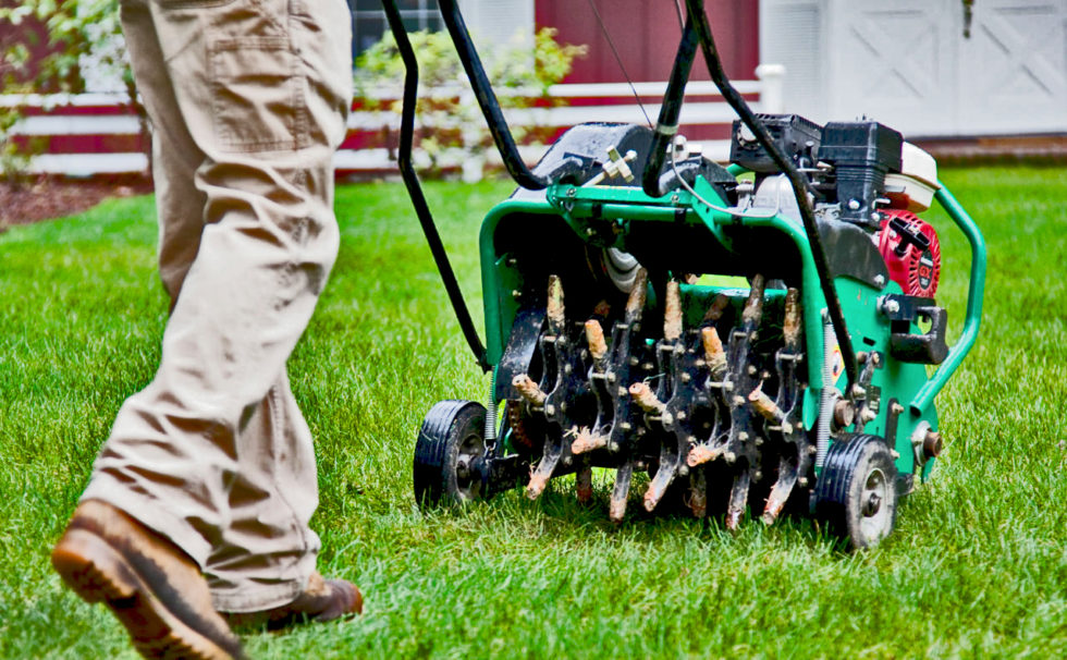 Benefits of Lawn Aeration - Pine Valley Rental & Sales